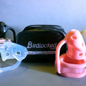 Birdlocked CLASSIC