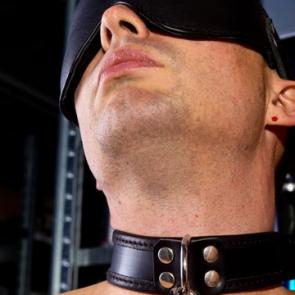Mister B Slave Collar With D-Ring
