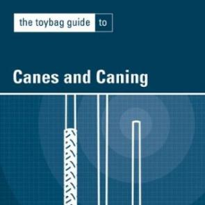 The Toybag Guide to Canes & Caning