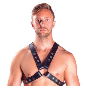 Traditional Latigo Leather Top Harness