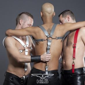 Mister B Leather Combination Harness & Braces